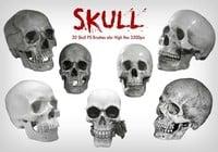 20 Cráneo PS Brushes ABR vol.7