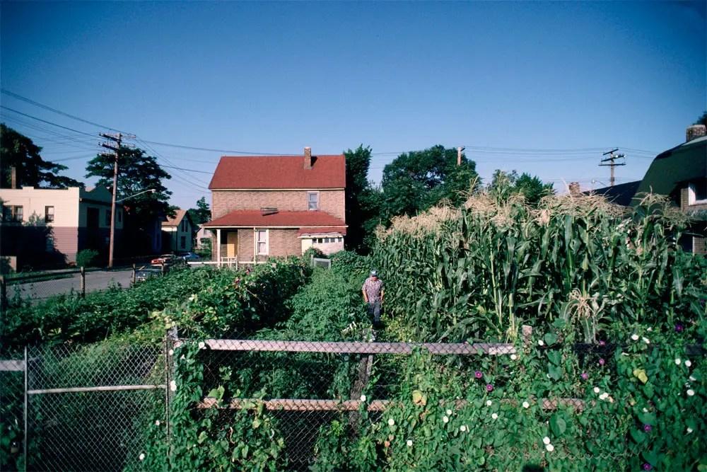 Hutchins Cole's Garden, 1987
