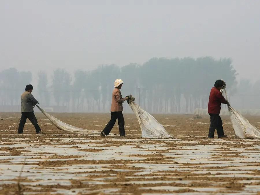 Кроме того, формальное кредитов фермерам ограничено, и они в основном полагаются на неофициальные кредитные взяв кредиты от семьи и друзей.
