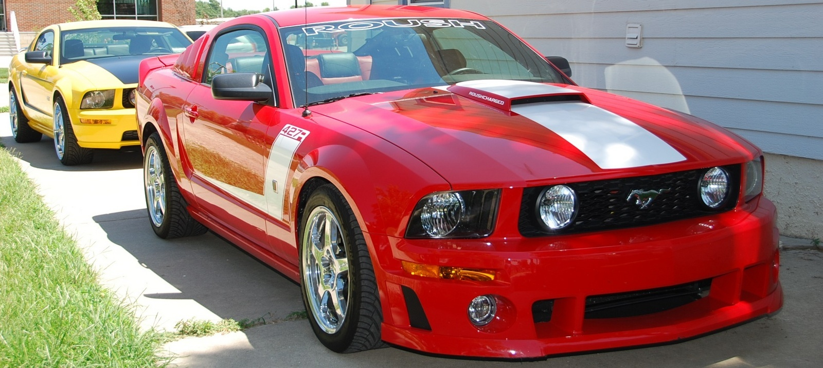 2000 mustang gt or a 2000 roush