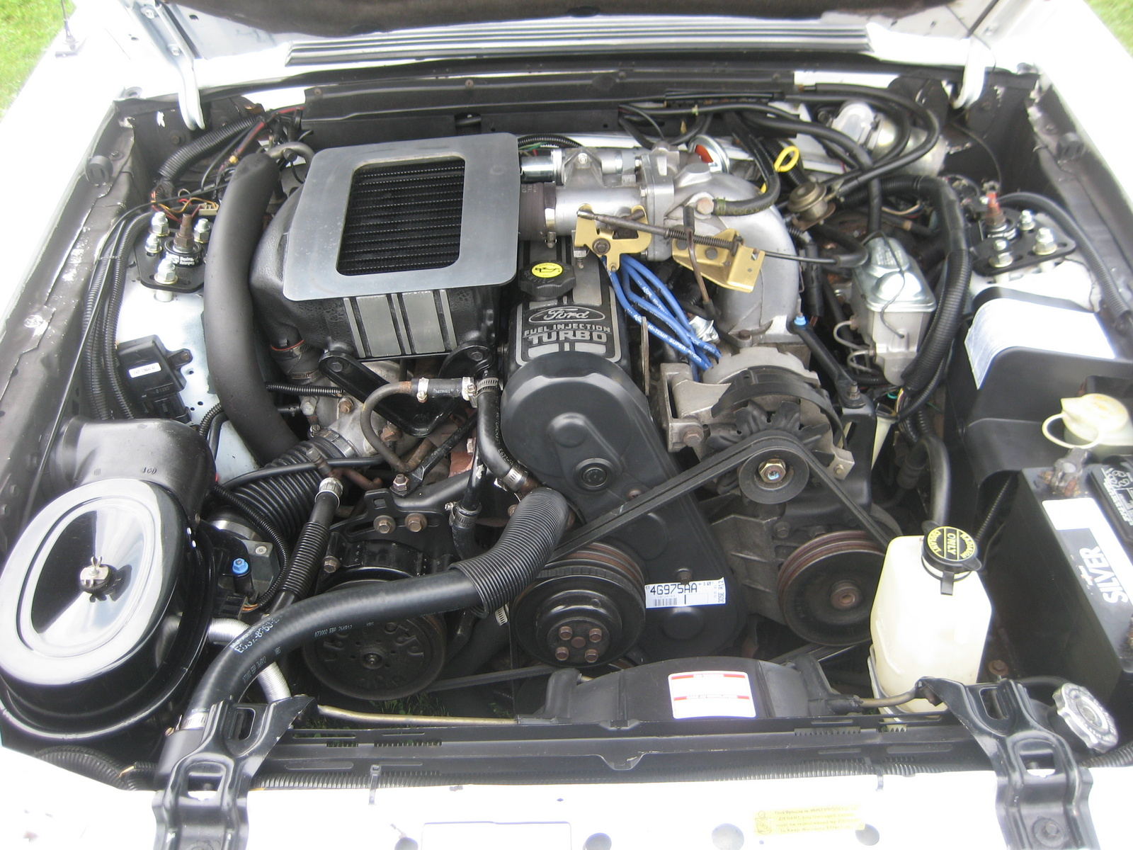 1986 Mustang Svo Engine Bay 86 Wiring Diagram