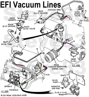 Ford F150 Questions  Is there a diagram for vacuum hoses