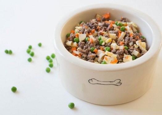 Chó Pug ăn gì? thức ăn cho chó Pug