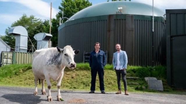 1623216071_cow_cryptomining_farm_(source_-_bbc)_story.jpg