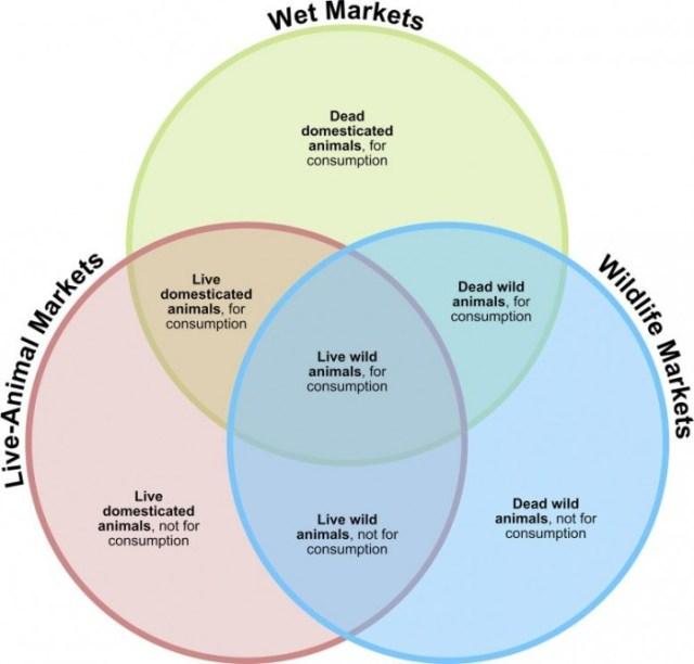 Wet-Market-Descriptions-777x744.jpg
