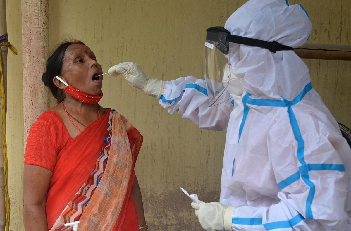 Champignon Noir Inde Covid : Coronavirus En Inde Apres Le Champignon Noir Un Champignon Blanc Menacant Cnews