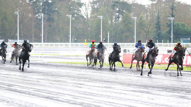 Horse racing: first win in a quinté for Tony Parker's mare