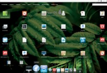 Pear OS Linux 3.0 Performance Reviews 4