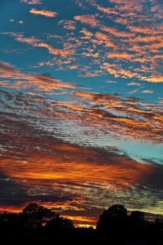 5-Cumulus-Hither-280x422 Color Inspiration in Nature: Sizzling Shades of Sunrises and Sunsets Color