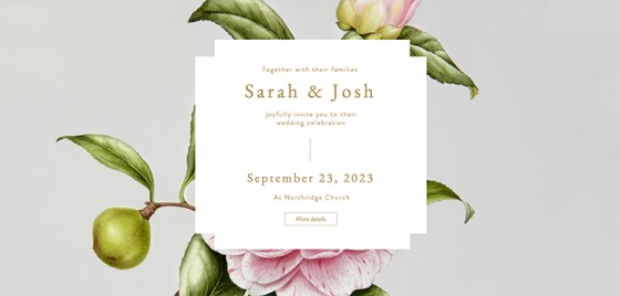 How-to-Create-the-Perfect-Wedding-Website_3-560x268 Tips on how to Create the Best Marriage ceremony Web page for Loose Color
