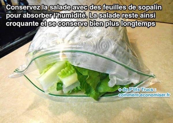 astuce pour conserver la salade au frigo plus longtemps