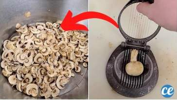 Comment Couper un Paquet de Champignons en un Temps Record !