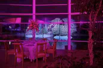 Del Bosque Restaurante crea una romántica velada