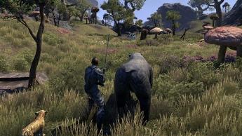 The Elder Scrolls Online: Morrowind en modo individual