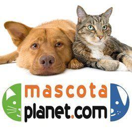 Mascota Planet aumenta su presencia online