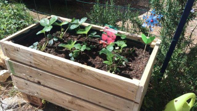 diy creer une jardiniere avec une palette en bois