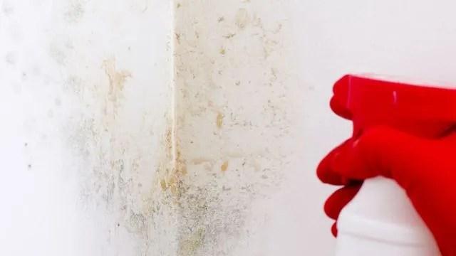 Comment Nettoyer Une Tache Sur Un Mur Blanc Nettoyer Un
