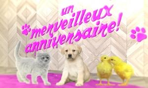 cartes chats virtuelles gratuites