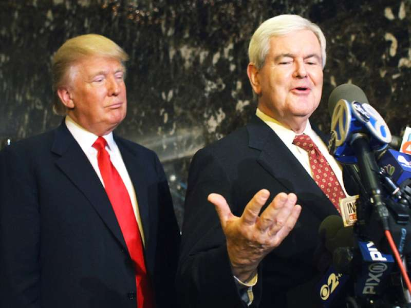 donald trump newt gingrich