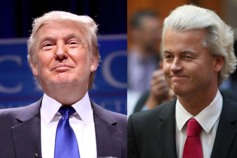donald trump wilders