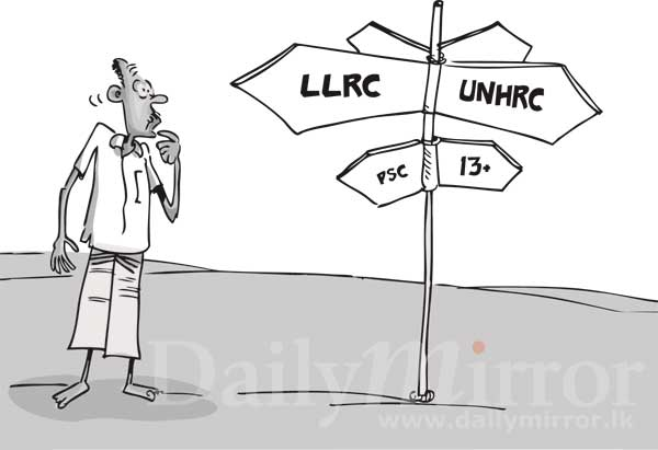 Image result for LLRC Cartoons