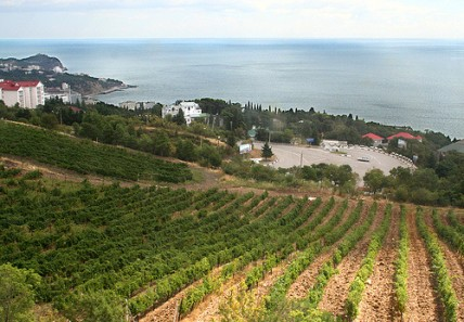 Massandra vineayrd Crimea