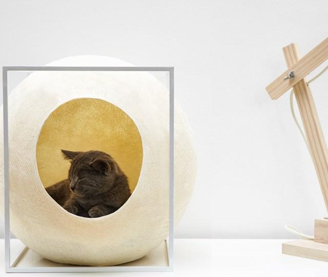 Meyou Paris Cat Furniture Designboom