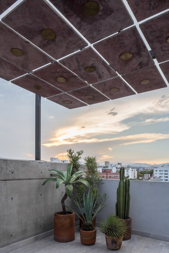 palma escandon terrace mexico city