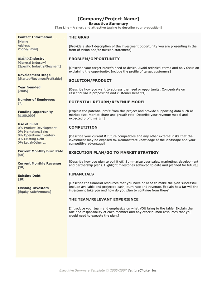 One Page Summary Template summary template for proposal executive – One Page Summary Template