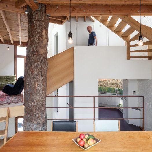 Atelier Vens Vanbelle build pentagonal house around an oak tree trunk