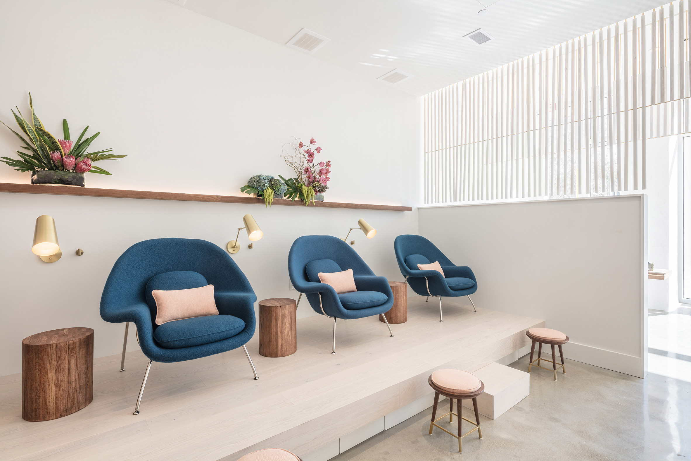 Paloma by AfterAll Studio