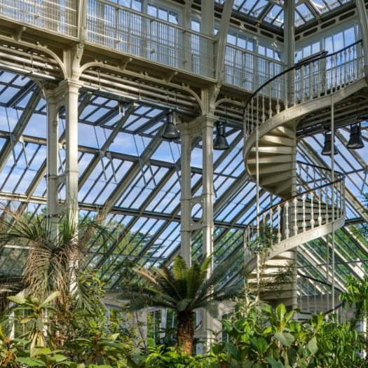Temperate House Kew Gardens restoration by Donald Insall Associates