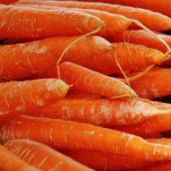 Carrot concrete