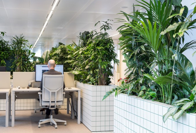 Synchroon office interiors designed by Space Encounters