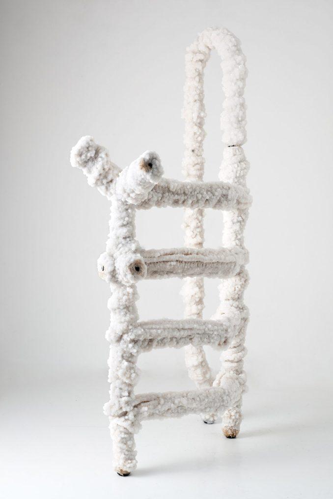 A ladder made from salt crystals