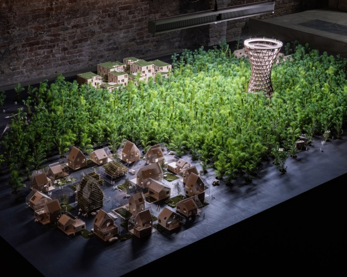 1,200 tree seedlings in a hydroponic grow system in Venice
