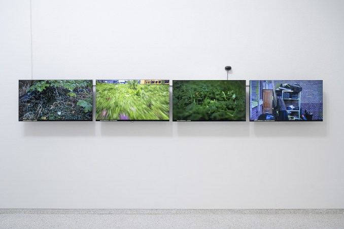 video works exploring Multi-species Urbanism