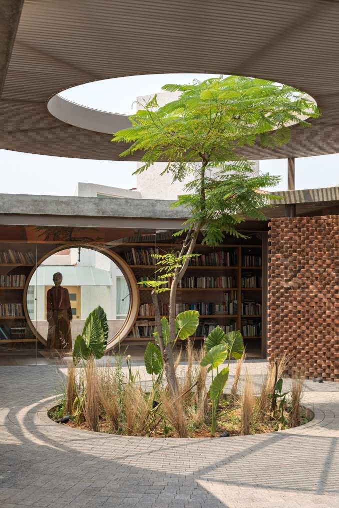 Tree growing though roof of Casa UC by Daniela Bucio Sistos