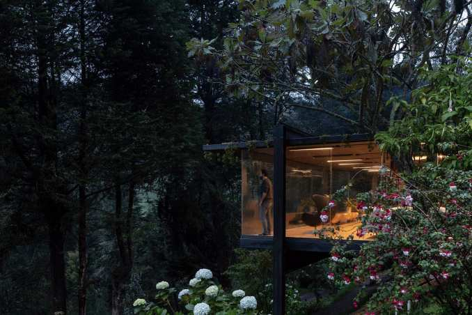 Glass house extension in forest