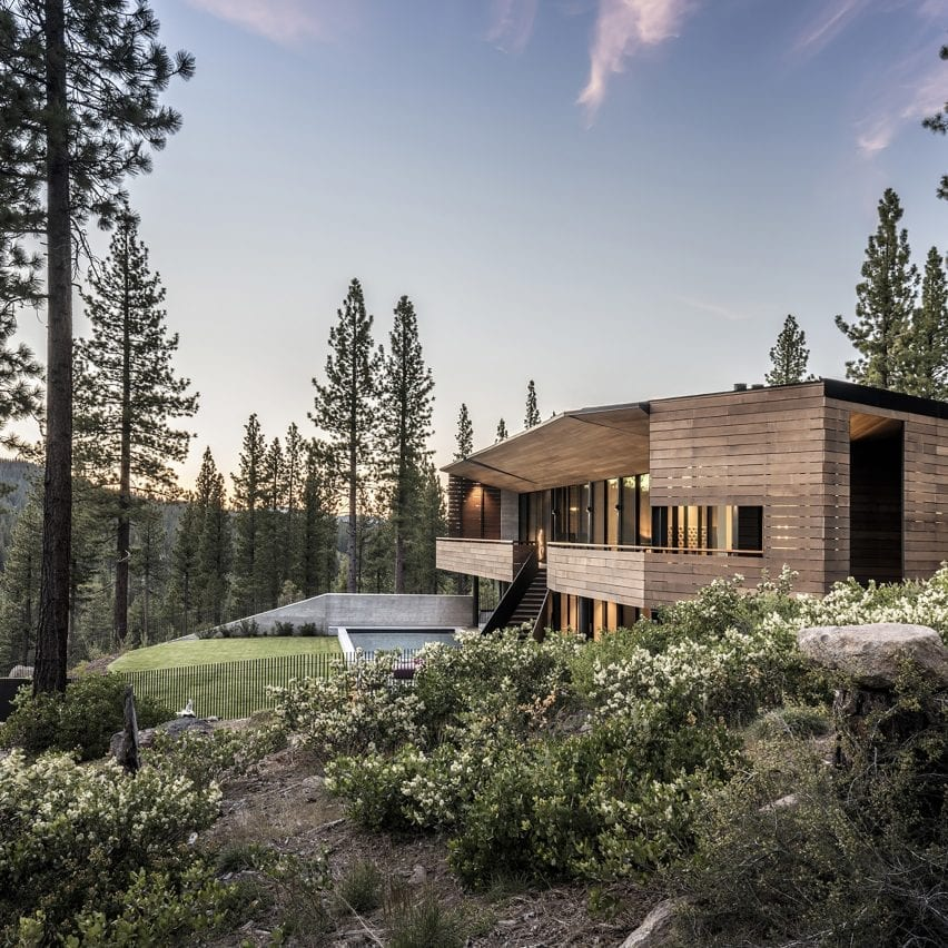 Viewfinder House among the trees