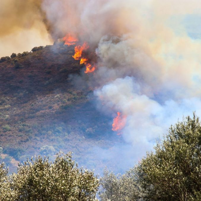 Forest fire in Spain