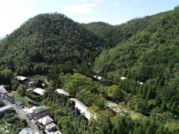 A photograph of the forest around The Aman Kyoto Resort