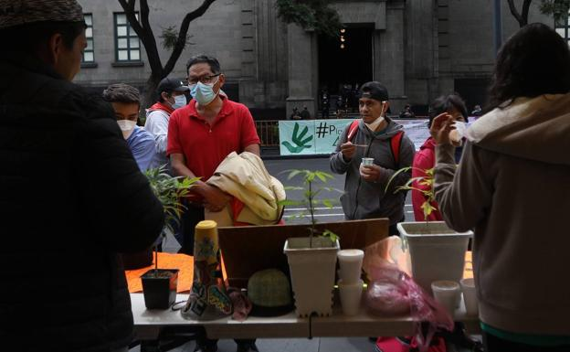 Activists of the Mexican Cannabis Movement gathered before the Supreme Court.