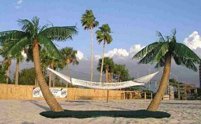 Palm Island Hammock Stand | DudeIWantThat.com