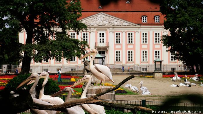 Дворец Фридрихсфельде на территории зоопарка
