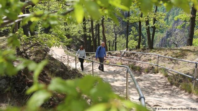 Two hikers on a forest path, Rosstrappe, Harz Mountains, Germany (picture-alliance/dpa/M. Bein)