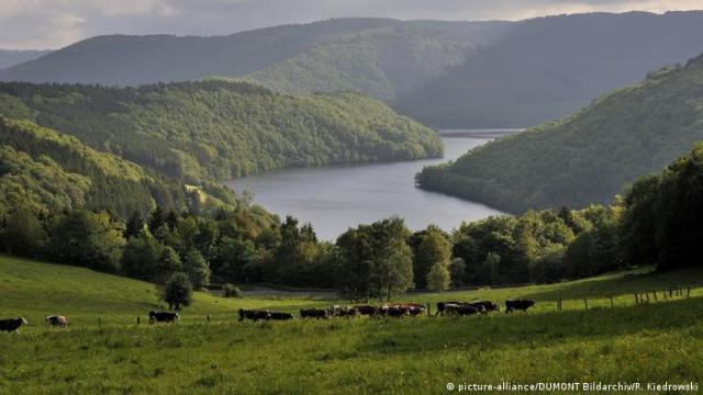 Hills around the Obersee lake, Eifel, Germany (picture-alliance/DUMONT Bildarchiv/R. Kiedrowski)