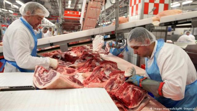 Workers in a slaughterhouse in Germany