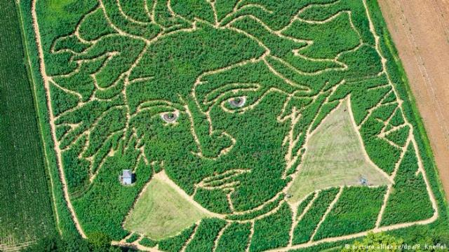 Arial view of a corn field, with paths cut in to resemble Beethoven's image