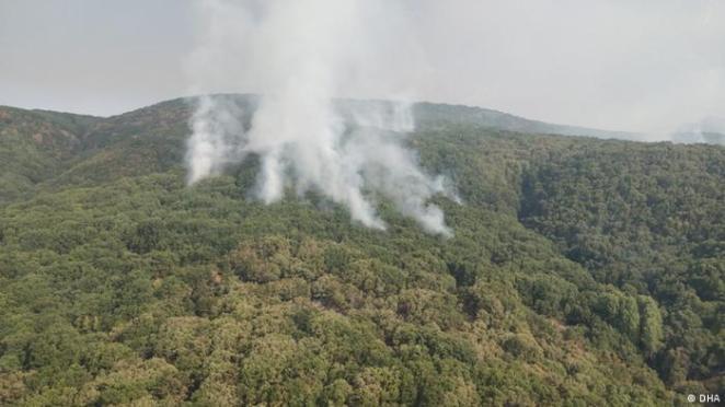 Türkei Klima l Waldbrand in Tunceli